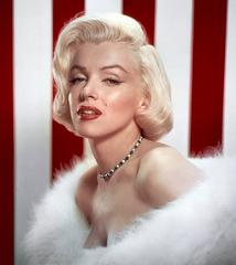 marilyn monroe's photos stolen in prague
